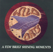 [A Few Brief Shining Moments]